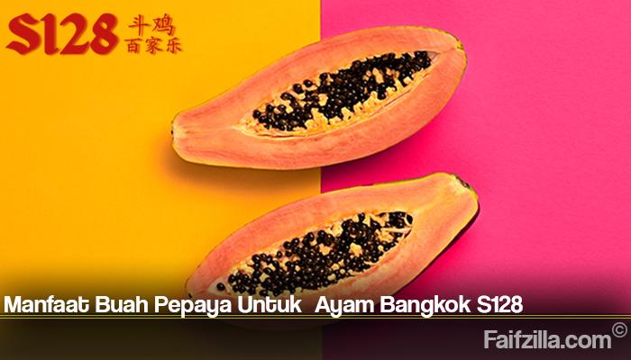 Manfaat Buah Pepaya Untuk Ayam Bangkok S128