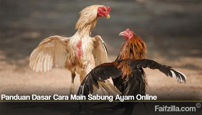 Panduan Dasar Cara Main Sabung Ayam Online